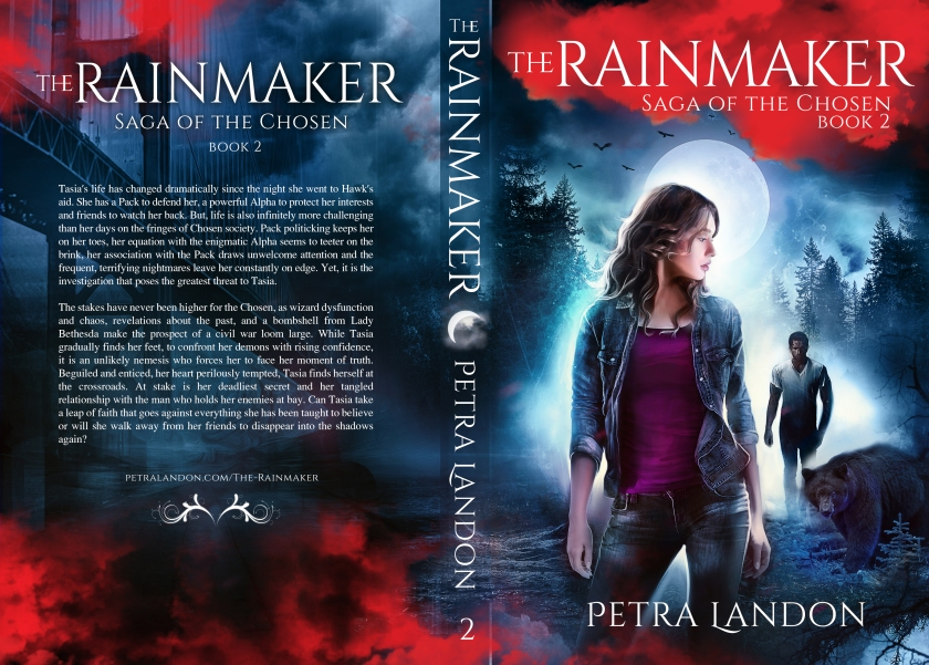 TheRainmaker_PrintCover.jpg